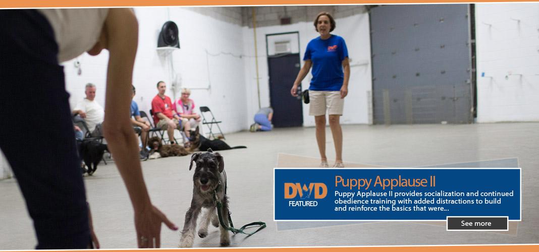 slider-puppyap2